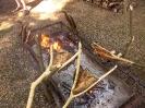 Peka rib na Bujraških dnevih